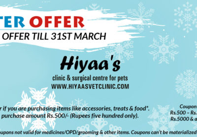 Winter Offer – Avail this opportunity till 31st March
